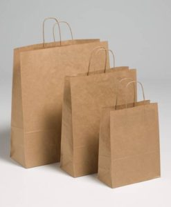 Brown Kraft Paper Carriers
